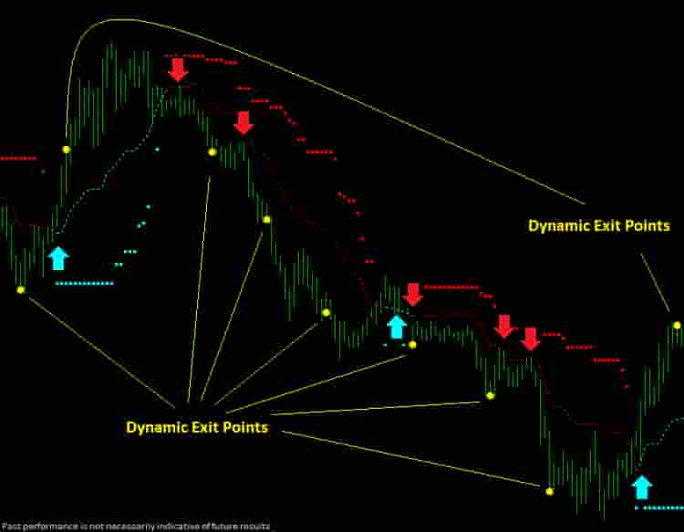 Dynamic trend  trader Screenshot shows dynamic exit points.